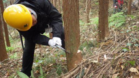 http://www.naguri-genki.com/blog/uploaded/RIMG0017.JPG